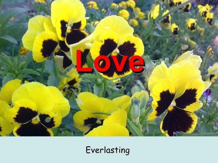 Love <ul><li>Everlasting  </li></ul>