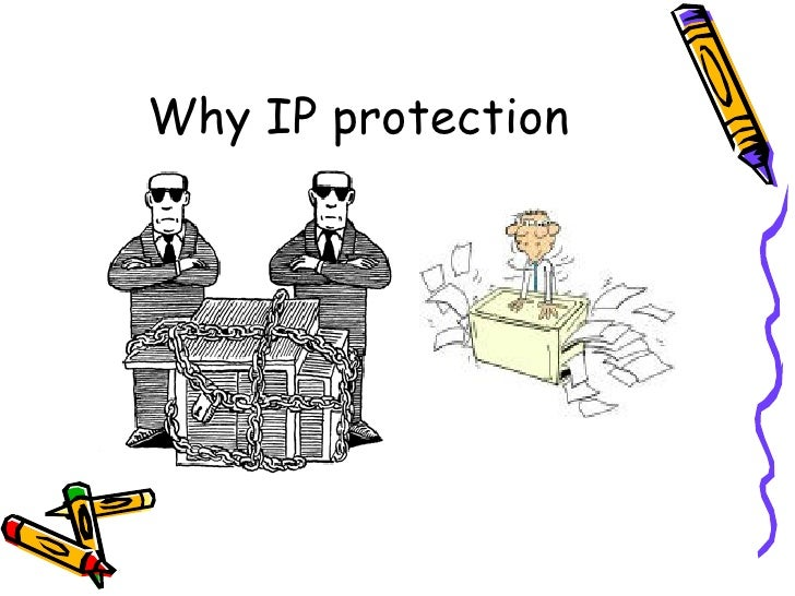 Intellectual Property Manager Definition