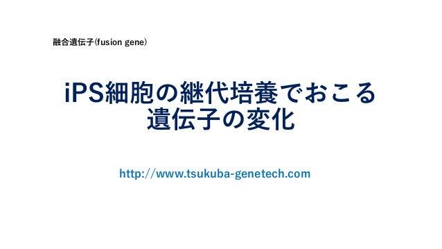 iPS細胞の継代培養でおこる 遺伝子の変化 融合遺伝子(fusion gene) http://www.tsukuba-genetech.com