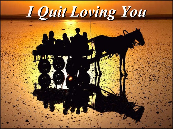 I Quit Loving You