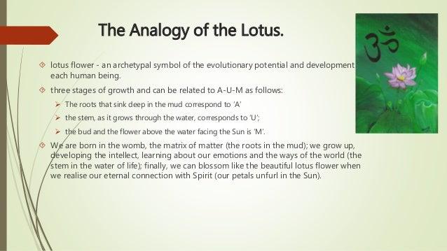 Lotus Flower Description Choice Image Flower Decoration Ideas