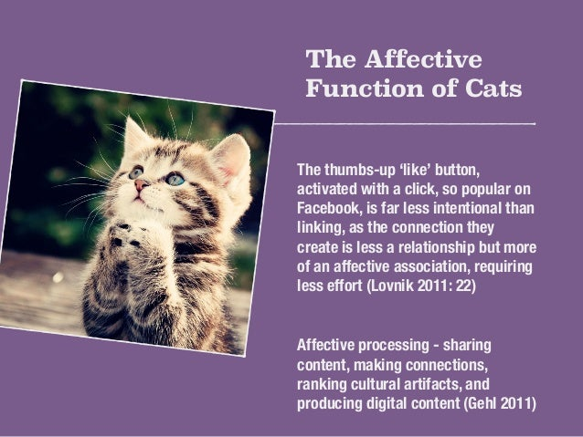 The Affective  Function of Cats  The thumbs-up 'like' button,  activated with a click, so popular on  Facebook, is far les...
