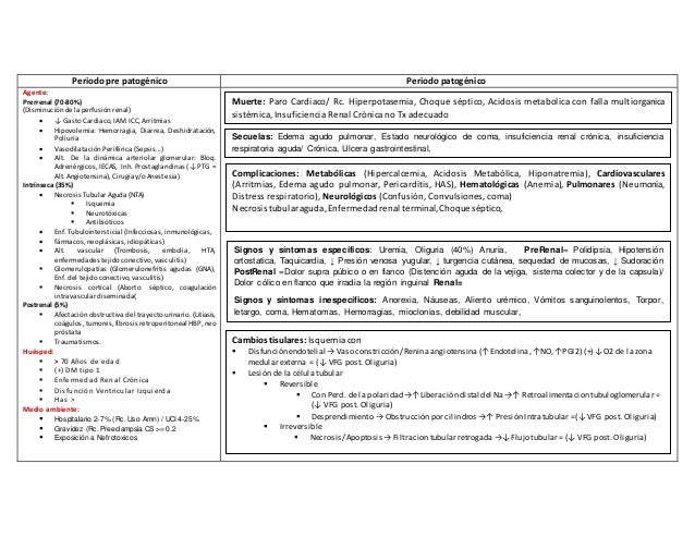 Periodo pre patogénico Periodo patogénico Agente: Prerrenal (70-80%) (Disminución de la perfusión renal)  ↓ Gasto Cardiac...