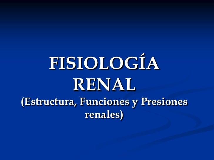 FISIOLOGÍA RENAL(Estructura, Funciones y Presiones renales)<br />