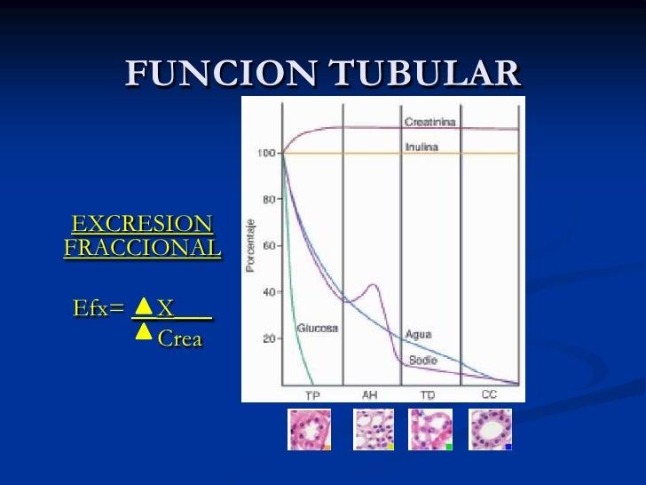 Reabsorción = 178.5</li></li></ul><li>Sustancia que no debe ser eliminada<br />FILTRACIÓN: salida de líquido de los capila...