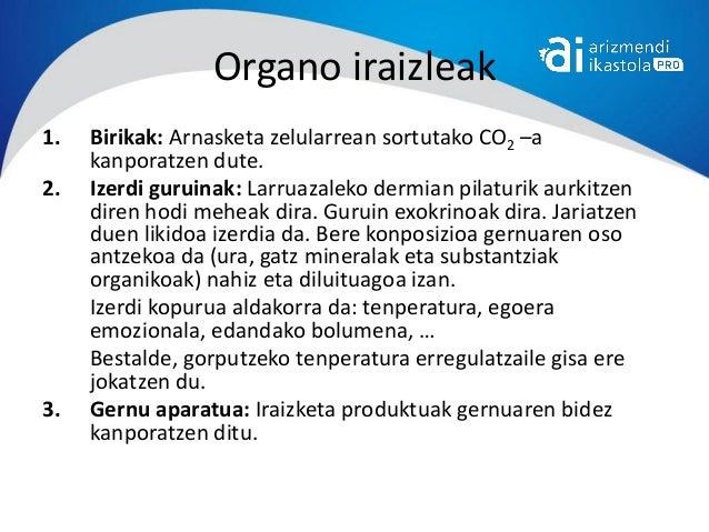 Organo iraizleak1.   Birikak: Arnasketa zelularrean sortutako CO2 –a     kanporatzen dute.2.   Izerdi guruinak: Larruazale...