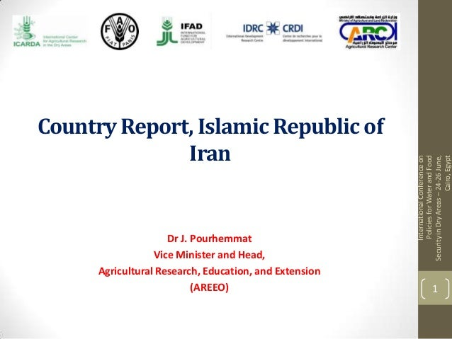 Iran country research report
