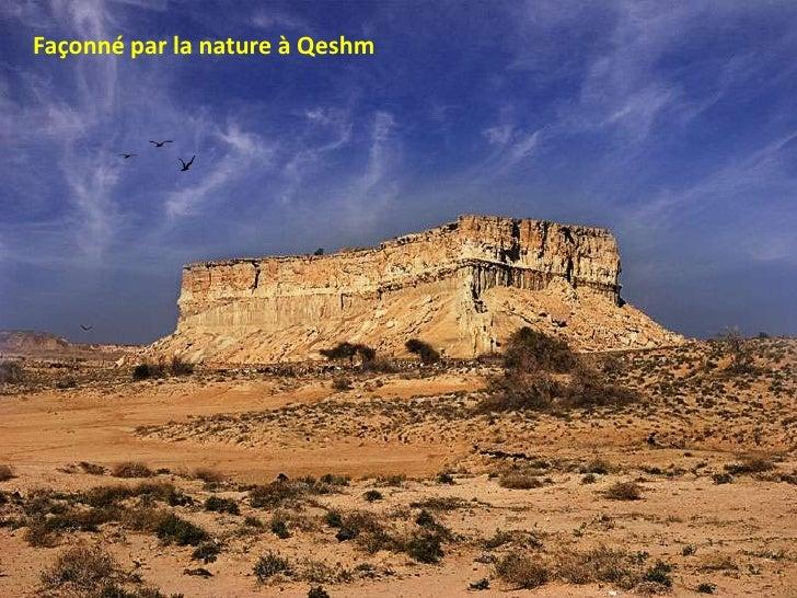 Iran Nature  Life
