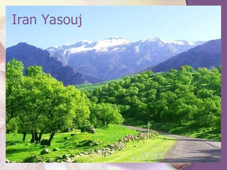 Iran Yasouj