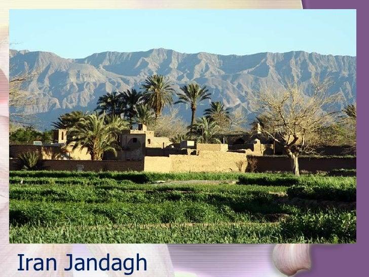 Iran Jandagh