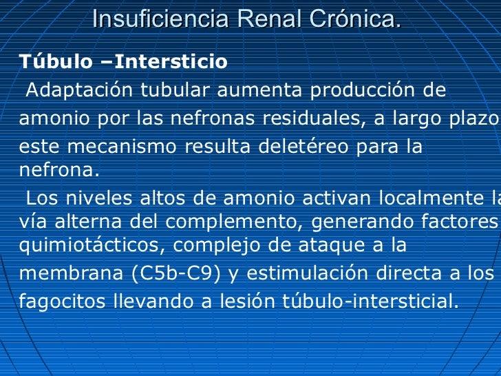 Insuficiencia Renal Crónica.Túbulo –Intersticio Adaptación tubular aumenta producción deamonio por las nefronas residuales...
