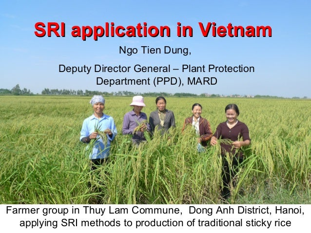 SRI applicationSRI application in Vietnamin Vietnam Farmer group in Thuy Lam Commune, Dong Anh District, Hanoi, applying S...