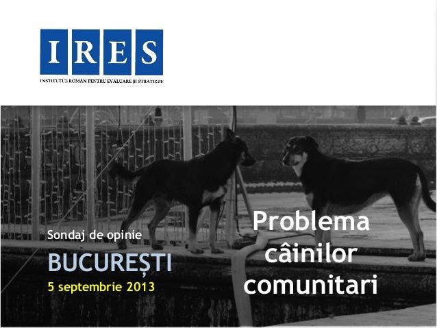 Sondaj de opinie BUCUREȘTI 5 septembrie 2013 Problema câinilor comunitari