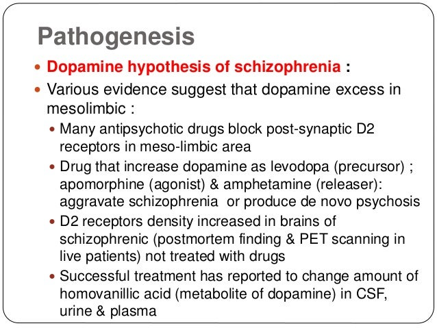 schizophrenia dopamine hypothesis essay Schizophrenia and the dopamine hypothesis schizophrenia is a complex mental disorder characterised by difficulty in: telling the difference between real and.