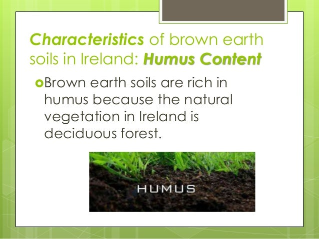 Irish brown earth soils for What are the characteristics of soil