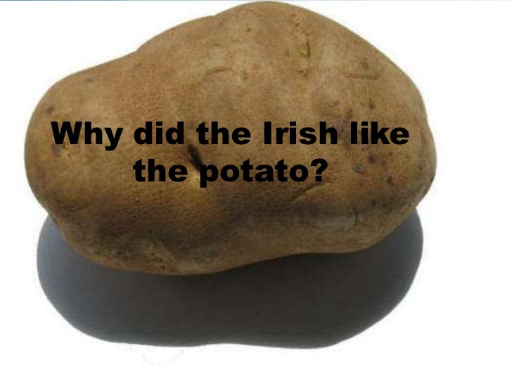 the importance of the potato famine to ireland What is the significance of the irish potato famine  i had family members to died because of the potato famine i n ireland it is nothing to joke about.