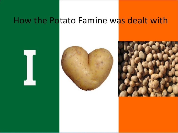 the irish potato crisis This feature is not available right now please try again later.