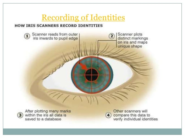 iris recognition system Reliable and accurate biometric identification system available in iris recognition a person is identified by the iris which is the part of eye using pattern matching or image processing.
