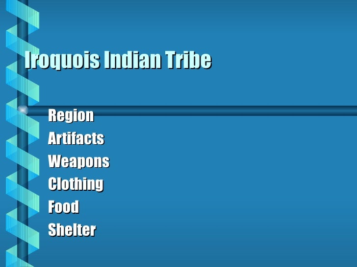 Iroquois Indian Tribe Region Artifacts Weapons Clothing Food Shelter