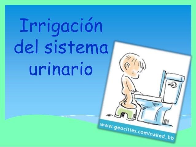 Irrigación del sistema urinario