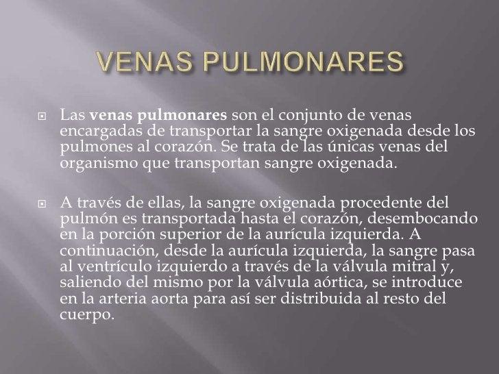 VENAS PULMONARES<br />Las venas pulmonares son el conjunto de venas encargadas de transportar la sangre oxigenada desde lo...