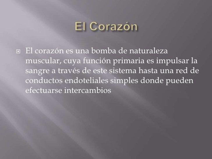 El Corazón<br />El corazón es una bomba de naturaleza muscular, cuya función primaria es impulsar la sangre a través de es...