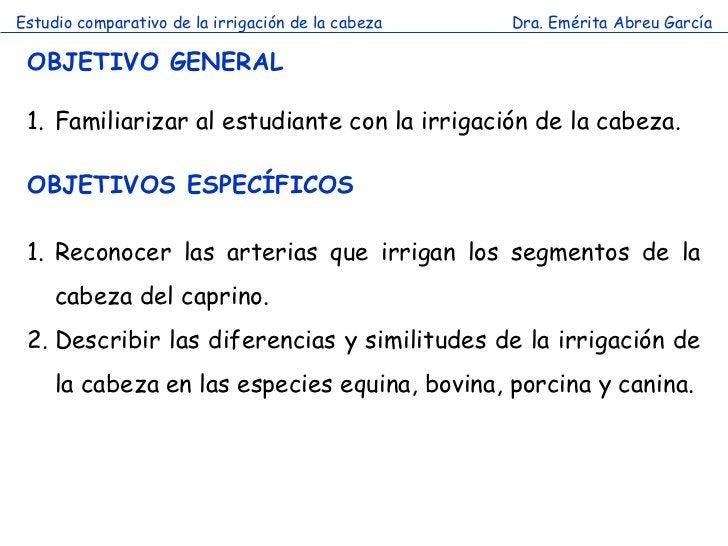 Estudio comparativo de la irrigación de la cabeza   Dra. Emérita Abreu García OBJETIVO GENERAL 1. Familiarizar al estudian...