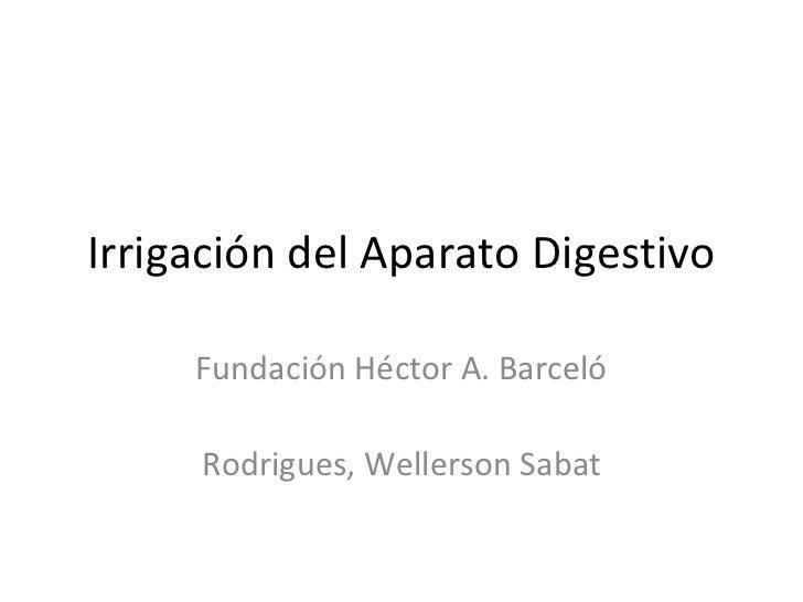 Irrigación del aparato digestivo