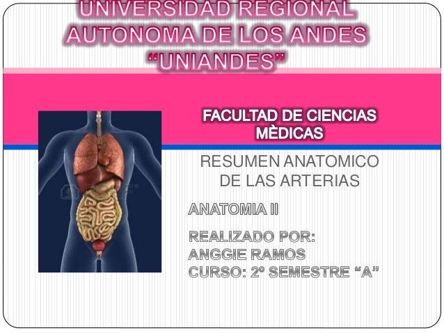 RESUMEN ANATOMICO DE LAS ARTERIAS