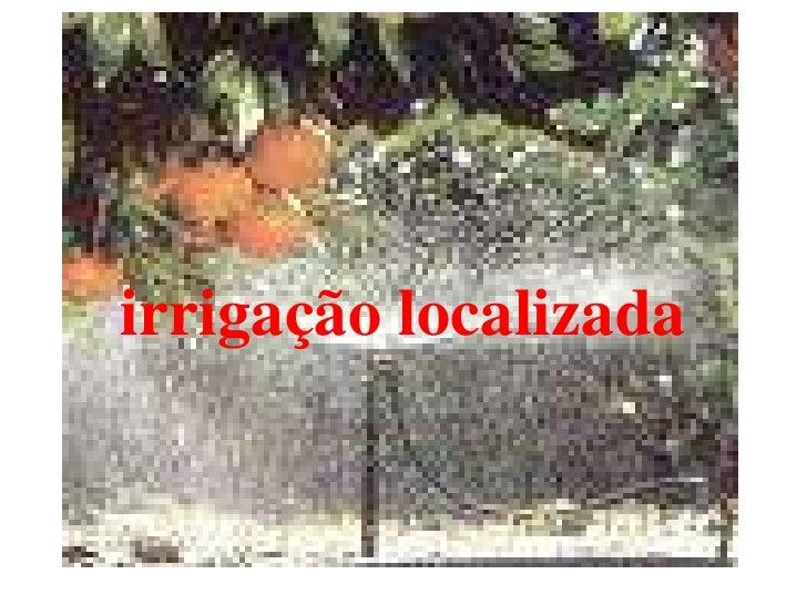 irrigação localizada<br />