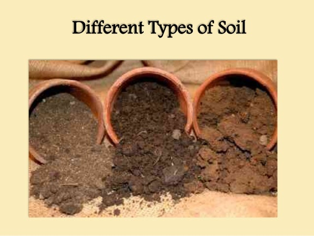 Irrigation engineering for Information about different types of soil