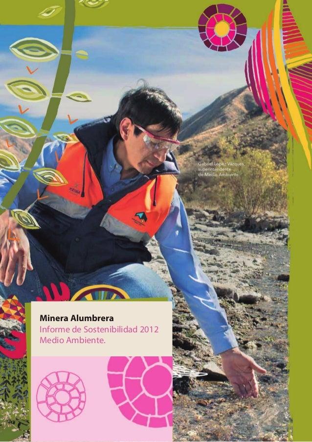 Minera Alumbrera Informe de Sostenibilidad 2012 Medio Ambiente.