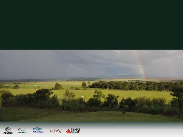 MilhoeSorgo INDICADORES DE SUSTENTABILIDADE EM AGROECOSSISTEMAS - ISA