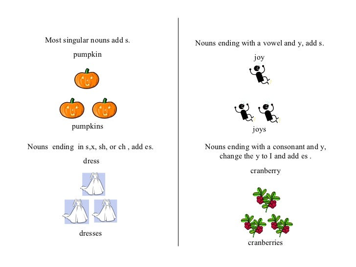 Most singular nouns add s. pumpkin pumpkins Nouns  ending  in s,x, sh, or ch , add es. dress dresses Nouns ending with a v...
