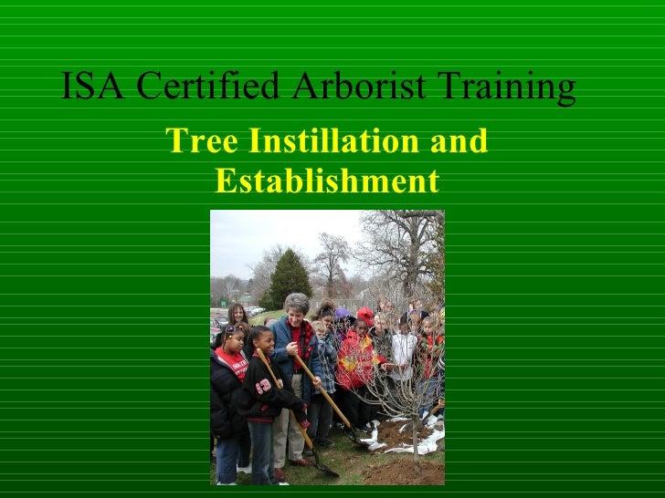 ISA Certified Arborist Training Tree Instillation and Establishment