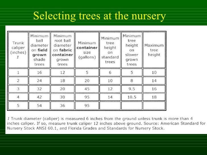 Isa Tree Selection