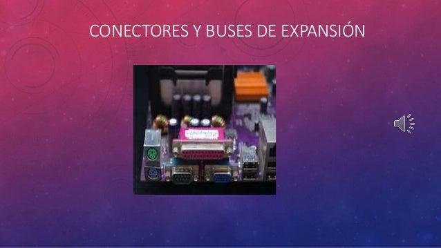 CONECTORES Y BUSES DE EXPANSIÓN