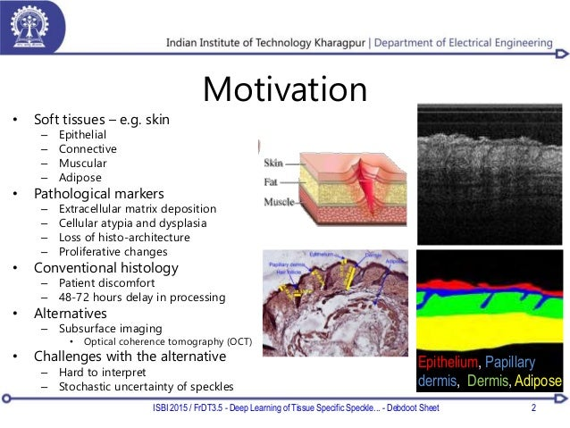 Motivation • Soft tissues – e.g. skin – Epithelial – Connective – Muscular – Adipose • Pathological markers – Extracellula...