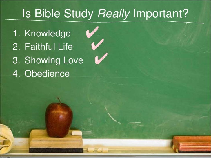 studying is important Importance of bible study: a christian's desire for the truth, the word of god, must be avid a believer must give the highest priority in his life to learning bible facts and principles there are many examples in the bible of the great effort made by people of god to obtain truth.