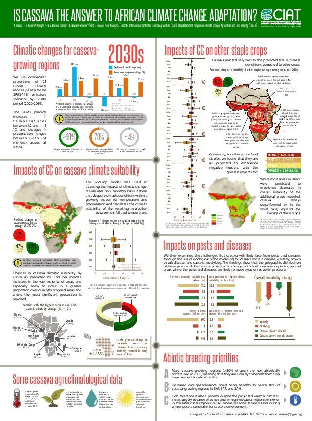 IS CASSAVA THE ANSWER TO AFRICAN CLIMATE CHANGE ADAPTATION? Research Area on Decision and Policy Analysis (DAPA)  2030s  C...