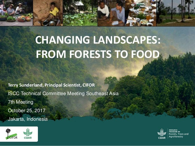 Terry Sunderland, Principal Scientist, CIFOR ISCC Technical Committee Meeting Southeast Asia 7th Meeting October 25, 2017 ...
