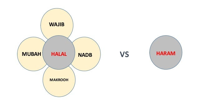 THE BENEFICIAL DIMENSIONS OF HALAL FOR HUMANITY  Analytical