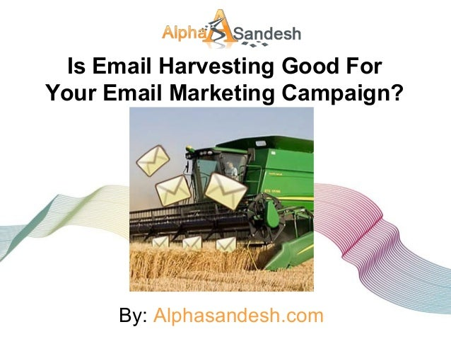 Is Email Harvesting Good For Your Email Marketing Campaign? By: Alphasandesh.com