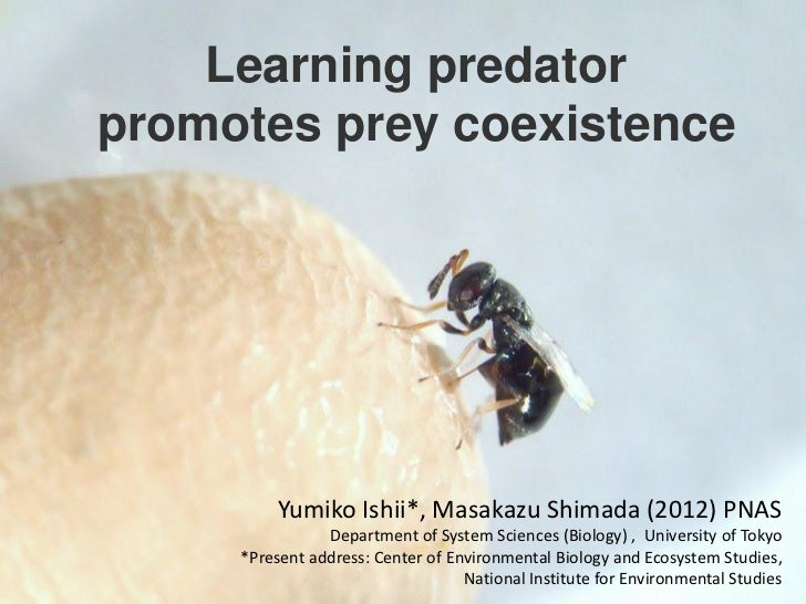 Learning predatorpromotes prey coexistence          Yumiko Ishii*, Masakazu Shimada (2012) PNAS                Department ...
