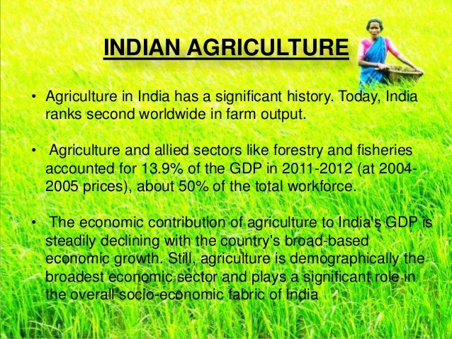 is indian agriculture a policy disaster