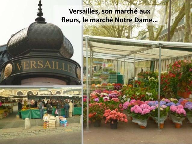Versailles, son marché auxfleurs, le marché Notre Dame…