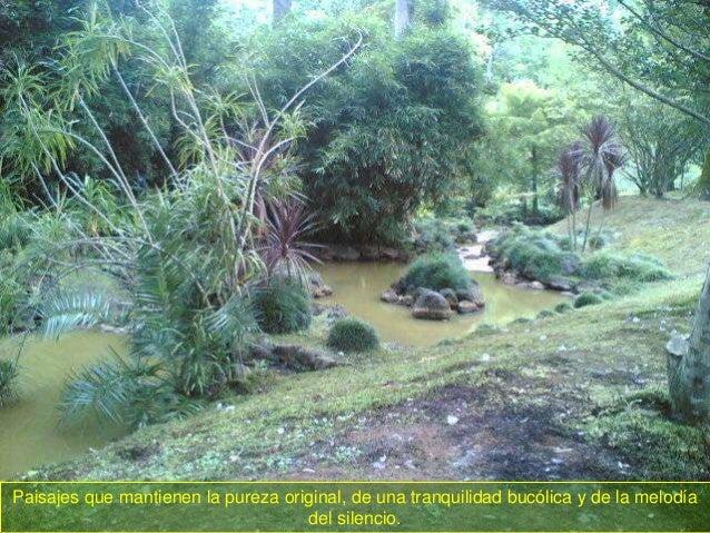 De viaje por el mundo - Página 2 Isla-de-san-miguel-azores-29-638