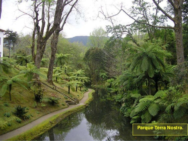 De viaje por el mundo - Página 2 Isla-de-san-miguel-azores-30-638