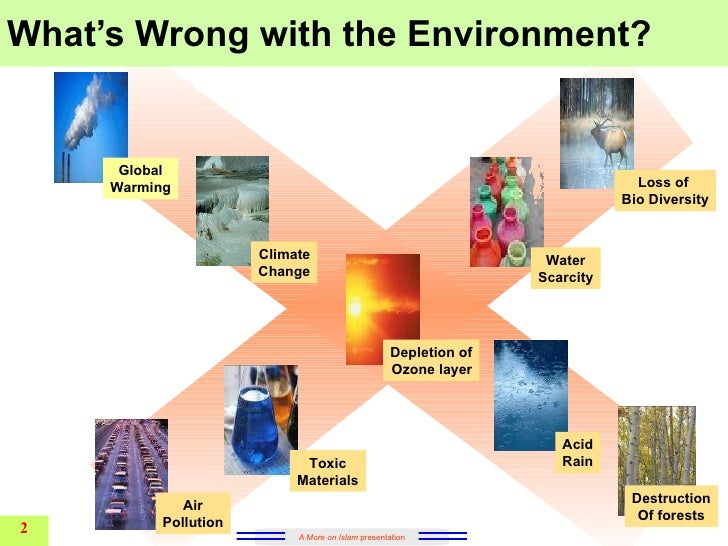 destruction environment essay