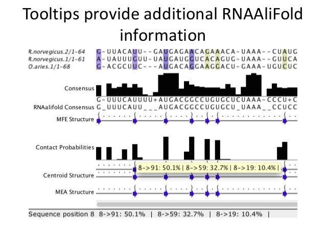 Protein and RNA alignment and analysis with Jalview 2.8.2 and JABA 2.1